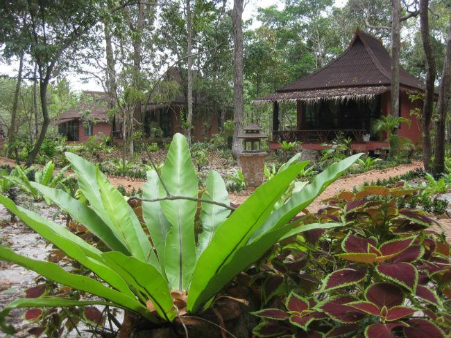 bamboobungalowskohphayamgardens